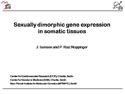 """Sexually dimorphic gene expression in somatic tissues """
